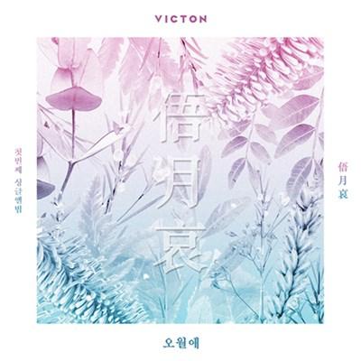 [Под заказ] VICTON - 俉月哀 - фото 5123